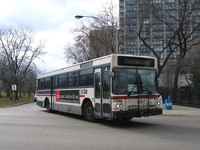 Bus #4241 at Foster and Marine, working route #146 Inner Drive/Michigan Express, on March 11, 2004.
